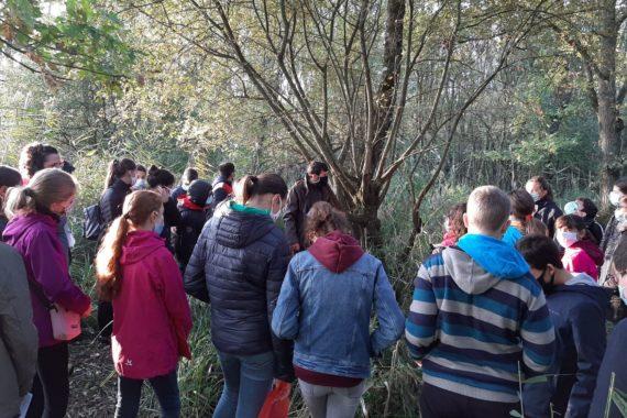 Sortie Natura 2000 Marais de Cré 5èmes